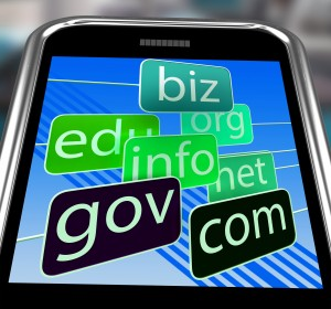 Domains On Smartphone Shows Mobile Internet Access And Online Information